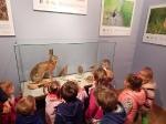 Wycieczka do Muzeum Przyrody_12