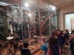 Wycieczka do Muzeum Przyrody_13