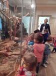 Wycieczka do Muzeum Przyrody_15
