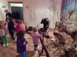 Wycieczka do Muzeum Przyrody_1