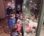 Wycieczka do Muzeum Przyrody_5