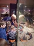 Wycieczka do Muzeum Przyrody_8